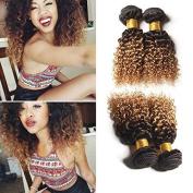 Wome Hair 3 Bundles/300g Peruvian Virgin Hair Kinky Curly 1B/27# Dark Roots Blonde Hair 100% Human Hair Wigs No Tangle Ombre Two Tone