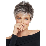 Panda Hair Ombre Colour Short Straight Heat Resistant Synthetic Wigs for Women Cosplay Party Use Halloween Wig