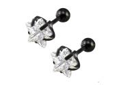 Black Earrings for Men Star Zircon Mens Stud Earring 6mm