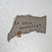 Words on Torn Paper