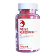 Phoenix Neurosupport