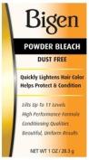 Bigen P & R Powder Bleach, 30ml