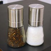 Salt & Pepper Grinder 2pc Set Spice Herp Glass Muller Hand Mill Grinding Bottle
