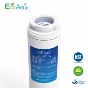 1 X Ecoaqua Ukf8001 Ice & Water Fridge Filter To Fit Amana / Maytag Puriclean Ii
