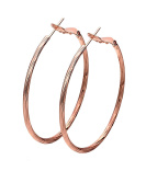 Large Rounded Fashion Jewellery Hoop Earrings White Gold Plated Best Gift for Woman and Girls Borong