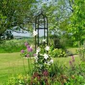 Gardman 07705 Classical Garden Obelisk Black Steel Plant Support Roses
