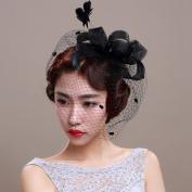 Veewon Ladies Elegant Feather Fascinator Hair Clip Hat Wedding Cocktail Mesh Net Veil Headband