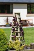 Zest 4 Leisure Scafell Pike Obelisk Wooden Garden Plant Rose Flower Support