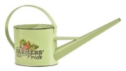 Vintage Style Indoor Watering Can From Fallen Fruits