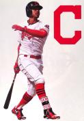 Francisco Lindor Mini FATHEAD Cleveland Indians Logo Official MLB Vinyl Wall Graphics 18cm INCH