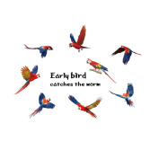 Winhappyhome Early Birds Wall Art Stickers for Bedroom Living Room Coffee Shop Removable Decor Decals