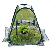 Mini Pop Up Greenhouse Clear Pvc Flower House Flowerpot Cover Gardening Plants