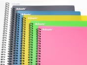 Esselte 8 Pocket A4 files
