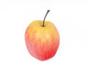 Artificial Gala Apple, Fruit Bowl, Faux Fruit, Fake Fruit, Home D