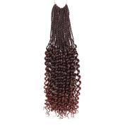 36cm 41cm 46cm Synthetic Crochet Braids Hair Extensions Crochet hair Faux Locs curly Synthetic Braiding Hair