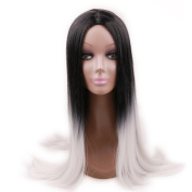 Alan Hair Long Black Grey Colour Middle Part Straight Wigs, High-Temperature Synthetic Fibre Ombre Silky Straight Wig for Women