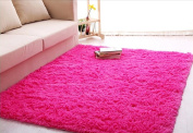ACTCUT Super Soft Indoor Modern Shag Area Silky Smooth Rugs Fluffy Rugs Anti-Skid Shaggy Area Rug Dining Room Home Bedroom Carpet Floor Mat 2.6- Feet By 5.3- Feet