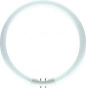 Fluorescent lamp TL5-C Pro 60 Watt 840 Philips