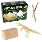 Dinosaur Skeleton Excavation Mini Kit