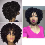 130 Density Natural Colour Afro Kinky Curly Lace Front Human Hair Wigs Short Bob Brazilian Virgin Human Hair Full Lace Wigs for African Americans