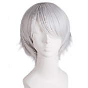 Danlier 35cm short straight synthetic wigs cosplay male heat resistant anime cosplay wigs for men,silvergrey