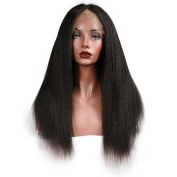 NEWFEIBIN Lace Front Wigs For Black Women Yaki Straight Brazilian Remy Synthetic Hair Wigs 200% Density Natural Colour 60cm