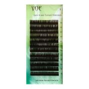 VOE Dark Brown Eyelash Extensions Individual Silk Lashes