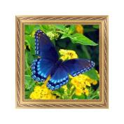 NDJK 5D Butterfly Diamond Embroidery Painting Rhinestone Cross Stitch DIY Home Decor