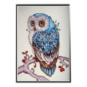 Gaosaili DIY Diamond Painting Rhinestone Pictures of Crystals Embroidery Kits Arts Crafts & Sewing Cross Stitch Cartoon Owl