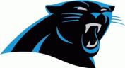 Caroline Panthers NFL Football Bumper Sticker 13cm x 10cm