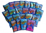 Colour Run Holi Powder 22x100 Gramme Packets Assorted Colours