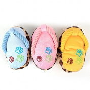 Gold butterfly@ Plush Sound Word Slippers Pet Dog Toys