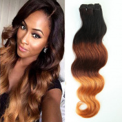 Ombre Weave Brazilian Virgin Remy Human Hair Bundle Body Wave Ombre Hair Extensions Weave Weft Grade 7A - #1B/33/27 Natural Black/Dark Auburn/Dark Blonde