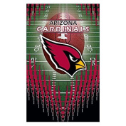 Arizona Cardinals 3 Pack Memo Pads