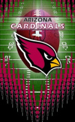 Turner NFL Arizona CardinalsMemo Book, 3 Packs