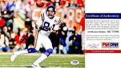 Anthony Carter Signed - Autographed Minnesota Vikings 20cm x 25cm Photo - PSA/DNA Certificate of Authenticity