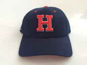 New Howard University Bisons Navy Hook and loop Hat