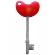 Easy Turn Disabled Toilet Access Key with Red Handle