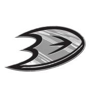 Anaheim Ducks Silver Chrome Coloured Raised Auto Emblem Decal NHL Hockey