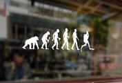 25cm DIVER Evolution Scuba Diving Vinyl Stickers Funny Decals Bumper Car Auto Computer Laptop Wall Window Glass Skateboard Snowboard
