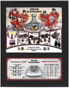 Chicago Blackhawks 2013 Stanley Cup Champions Sublimated 12x15 Plaque with Game Used Ice - Fanatics Authentic Certified