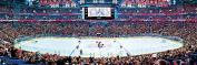 MasterPieces NHL Montreal Canadiens Arena Jigsaw Puzzle, 1000-Piece