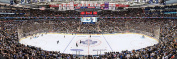 MasterPieces NHL Toronto Maple Leafs Arena Jigsaw Puzzle, 1000-Piece