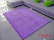 Norson Home Textiles, Ultra Soft 3 Cm Thick Indoor Morden Area Rugs Pads, New Arrival Fashion Colour [Bedroom] [Livingroom] [Sitting-room] [Rugs] [Blanket] [Footcloth] for Home Decorate. (Purple, 55.1* 78.7 inches
