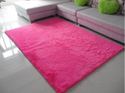 Norson Home Textiles, Ultra Soft 3 Cm Thick Indoor Morden Area Rugs Pads, New Arrival Fashion Colour [Bedroom] [Livingroom] [Sitting-room] [Rugs] [Blanket] [Footcloth] for Home Decorate. (Rose, 31.5* 62.3 inches