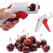 Cherry Olive Pits Pitter Stone Seed Remover Hand Held Corer Kitchen Tools,Tuscom