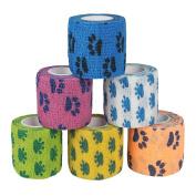 Andux Land 6 Cartoon set multifunction colour woven medical adhesive bandage Random Colour ZZTXBD-02