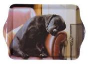 Sleeping Labrador Puppy Black Brown Melamine Carrying Trinket Tray 21 X 14cm