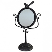 Type Foot Ice Grey Cast Iron Bird Dressing Table Cheval Mirror to apply 27x45 cm