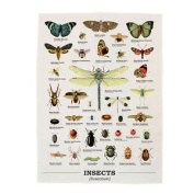 Insects Ecologie Tea Towel 100% Cotton Kitchen Dish Cloth Retro Dragonfly